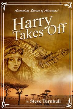 Harry Takes Off cover