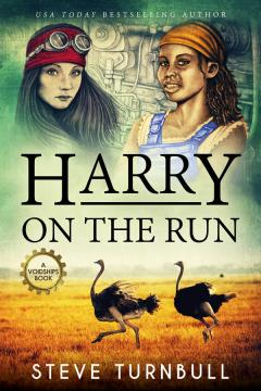 Harry on the Run cover